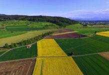 Zabezpieczenie upraw rolniczych